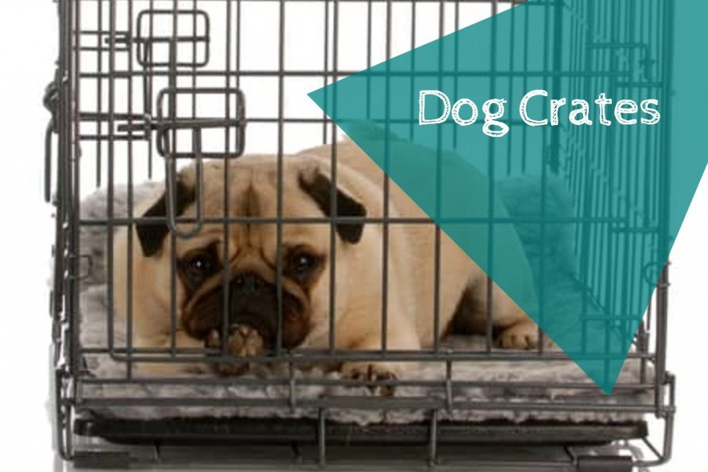 Where to buy a dog crate