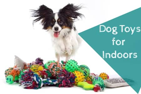 toys for dogs to play alone with