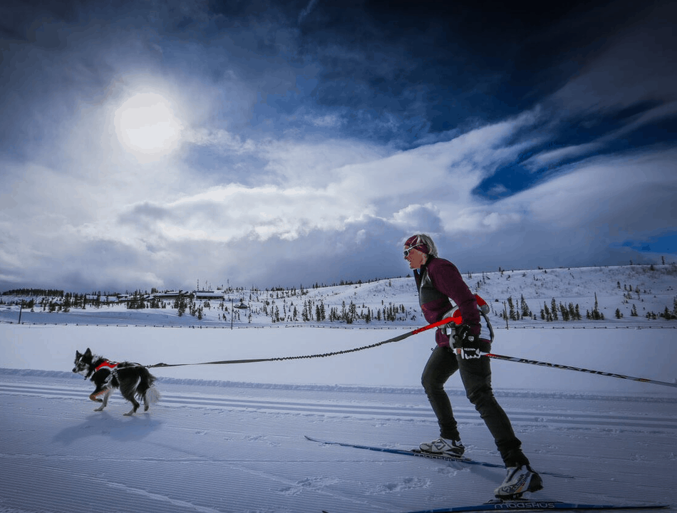 Skijoring at Devils Thumb Ranch