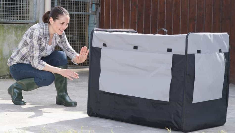 best crate for dog with anxiety
