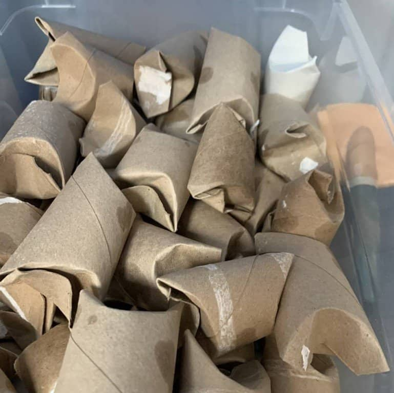 Toilet Paper Roll Toys