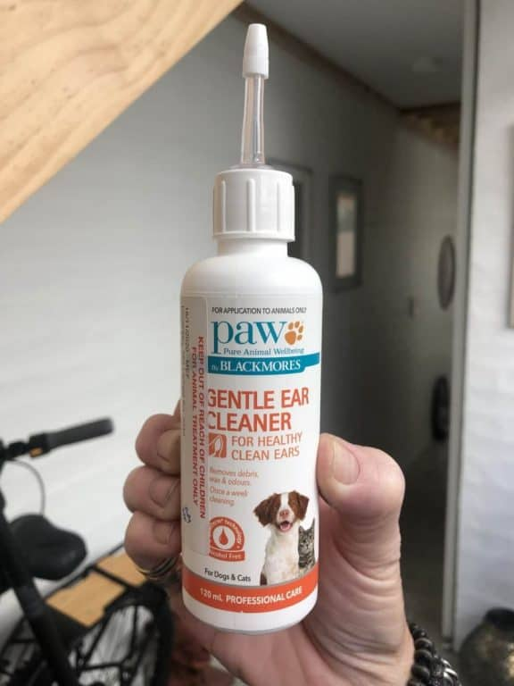 ear cleaner for poodle